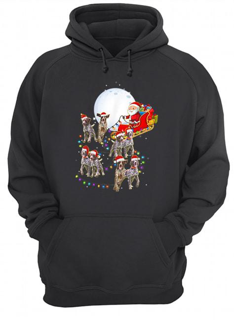 Beautiful German Shorthaired Pointer Christmas Reindeer Lights Gifts  Unisex Hoodie
