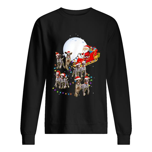 Beautiful German Shorthaired Pointer Christmas Reindeer Lights Gifts  Unisex Sweatshirt
